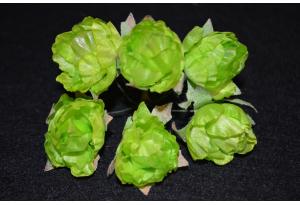 Пионы, 2-3 см, салатовые, в пучке 6 цветков