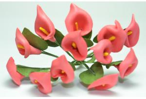Каллы, 1.5x2.5 см, красные, в пучке 12 цветков