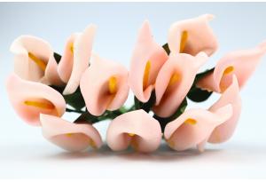 Цветы Каллы, 1.5x2.5 см, персиковые, в пучке 12 цветков