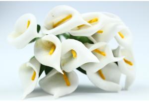 Цветы Каллы, 1.5x2.5 см, белые, в пучке 12 цветков