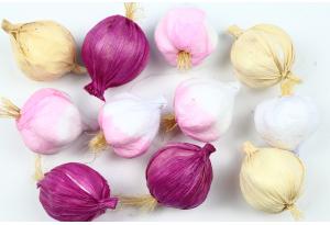 Фрукты и овощи, чеснок, 4,5 x 3 см, цветной микс