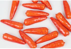 Фрукты и овощи, морковь, 5,5 x 1,8 см