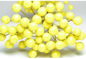 Калина глянцевая, 8 мм, желтая, пучок 50 ягод