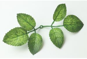 Листики декоративные (мини роза), зеленые, 12x6 см №1