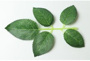 Листики декоративные (роза), зеленые, 14.5x11.5 см №3