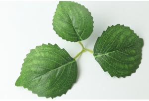 Листики декоративные (береза), зеленые, 20x12 см №5