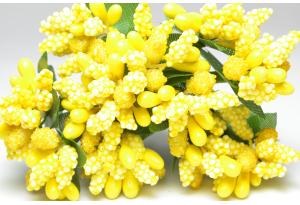 Веточка, тычинки летние, ярко-желтые, в пучке 12 веточек